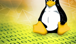 I will install  your email server on Linux