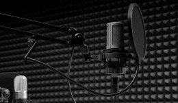 I will record professional Voiceover in french