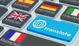 I will professionally translate spanish, english and portuguese and frensh
